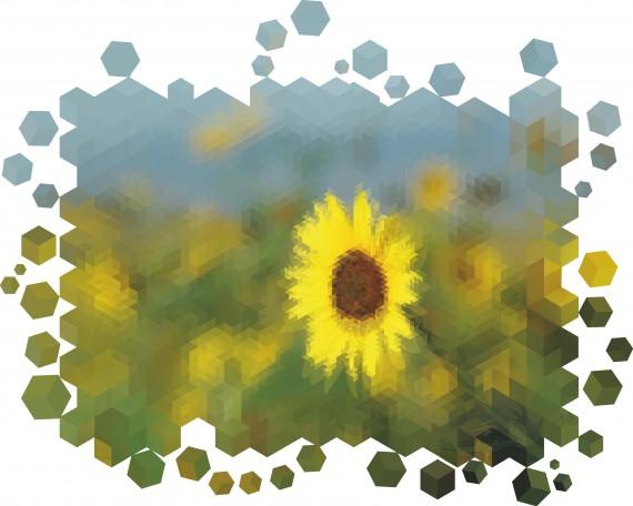 Freitagstutorial: Bildzerfall in Illustrator