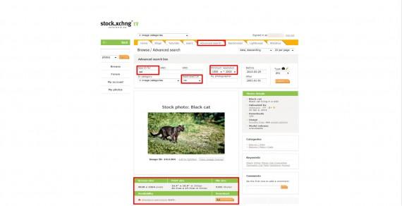 Informationen zur Stock.XCHNG Bilddatenbank