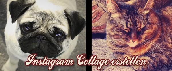 Freitagstutorial: Collage mit Instagram-Effekt gestalten