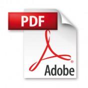 Das Icon des PDF-Dateiformates