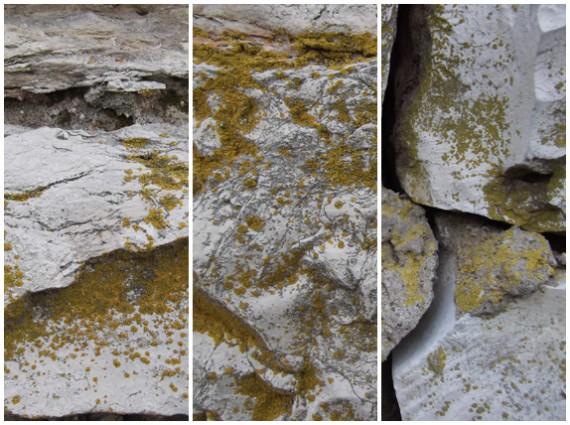 Kostenlose Stein-Texturen (5)