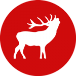 OSTRALE Logo Hirsch