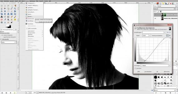 Tutorial Haare freistellen in GIMP (2)