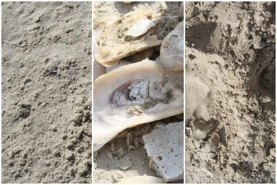 Download kostenloser Sand-Texturen (2)