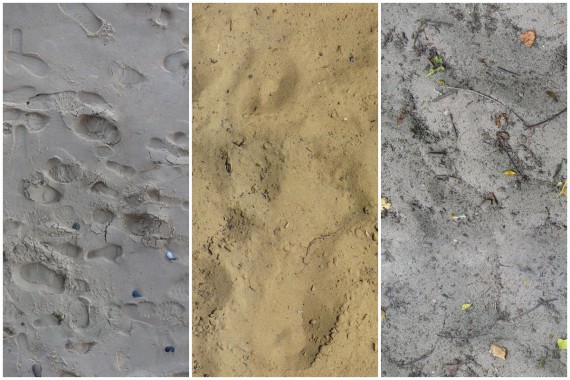 Download kostenloser Sand-Texturen (20)