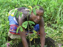 Mit SAXOPRINT klimaneutral drucken in Sofala Mosambik