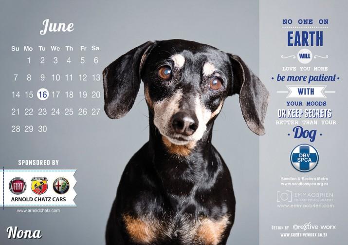 Kalender Design Inspirationen 2015 (23)
