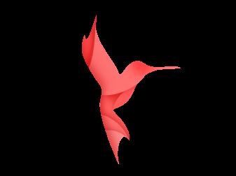 Interview mit Karsten Teßmann (Kolibri Logo)