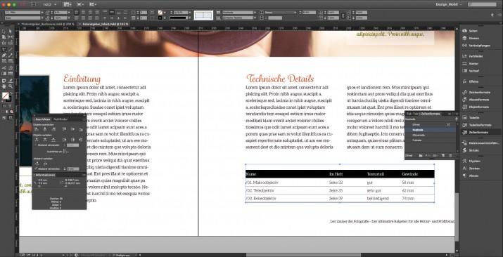 Ein Sachbuch layouten und Buchseiten gestalten (18)