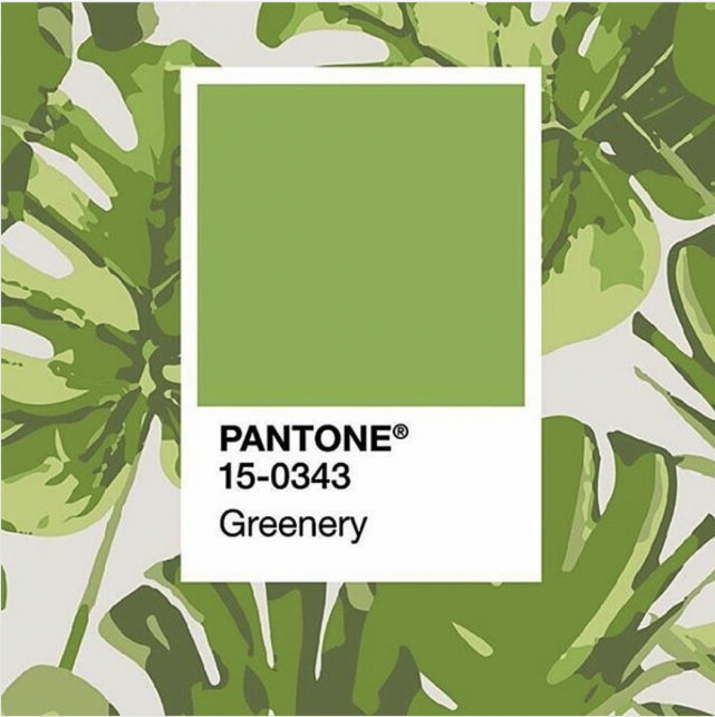 Greenery von Pantone – Die Farbe des Jahres 2017 (LAUP Estúdio)
